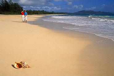 Hawaii, Couple walk on beach, triton trumpet shell in sand