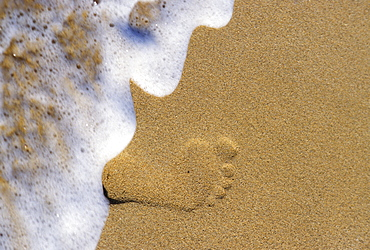 Single footprint in the sand with foamy wave washing onto shore