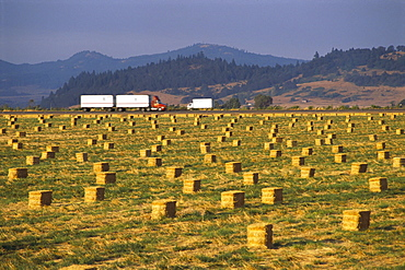Oregon, Willamette Valley, bales of straw, trucks on Highway I-5 in background B1170