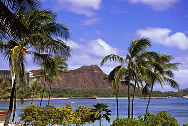 Hawaii, Oahu, Waikiki Trees And Palms Front, Ocean Activity Diamond Head Background Blue Sky White Puffy Clouds D1539