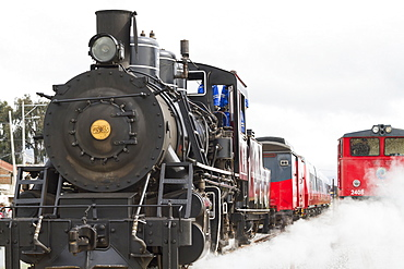 Baldwin 2-8-0 steam locomotive No.53 and diesel locomotive of Ferrocarriles del Ecuador, Colta, Chimborazo, Ecuador