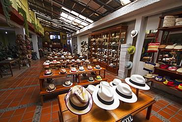 Panama hats for sale in the showroom of the Barranco Panama Hat Factory, Cuenca, Azuay, Ecuador