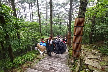 Porter carrying items, Mount Huangshan, Anhui, China