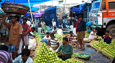 Orange seller and porters in wholesale fruit and vegetable market