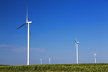 Wind turbines from the Elk Wind Energy Farm and a corn field, near Edgewood, Iowa, United States of America