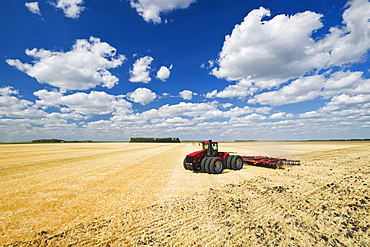 A tractor pulling a disc harrow works soil containing barley stubble, near Lorette, Manitoba, Canada