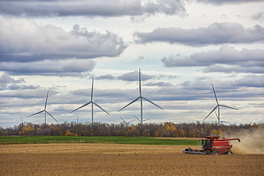 A combine harvests soybeans while wind turbines spin in the distance, Strathroy, Ontario, Canada
