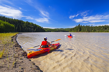 A group of kayakers paddles on the Tanana River near Delta Junction; Alaska, United States of America
