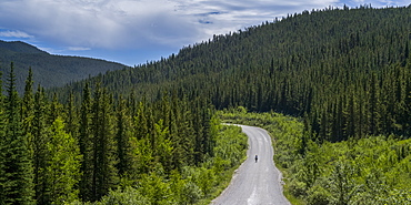 A cyclist rides in the middle of the road with dense forest in the foothills of the Rocky mountains; Longview, Alberta, Canada