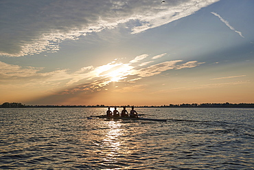 Hanlan Boat Club Junior men at morning practice in Lake Ontario, Toronto, Ontario, Canada