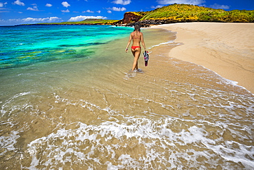 A young woman in a bikini with snorkelling equipment, Kawakiu Nui Beach on Molokai's West end, Molokai, Hawaii, United States of America