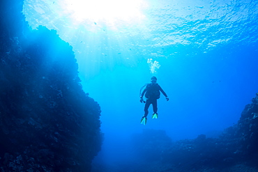 Diver outside of the dive site called First Cathedral off the island of Lanai, Hawaii, United States of America