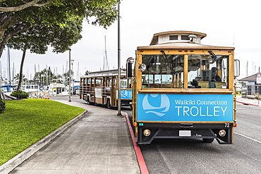 Waikiki trolleys waiting for passengers on Holomoana Street near the Ala Wai boat harbor (in background) in Waikiki, Honolulu, Oahu, Hawaii, United States of America