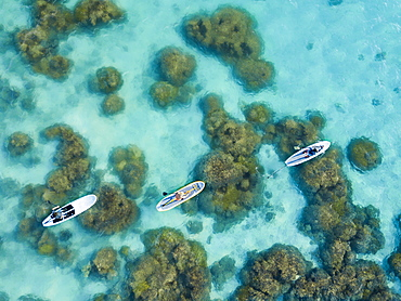 Aerial view of people on stand up paddle boards over the reef on Piti Bay, Mariana Islands, Asan, Guam, Micronesia