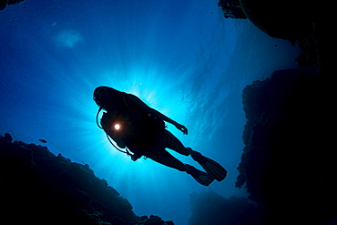 The silhouette of a diver in front of the sun, from below looking up at the surface, Yap, Micronesia