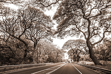 Road enroute to Kaplua from Kihei on the island of Maui, Maui, Hawaii, United States of America