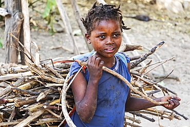 Ari girl carrying bundle of brushwood, Jinka, Southern Nations Nationalities and Peoples' Region, Ethiopia