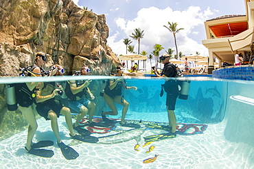 SCUBA diving instructor Anthony Manion practices skills with four students in a hotel pool, Maui, Hawaii, United States of America