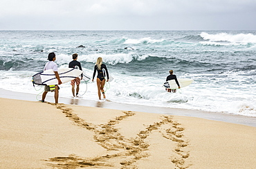 Young adult surfers enter the water with their surfboards, Kihei, Maui, Hawaii, United States of America