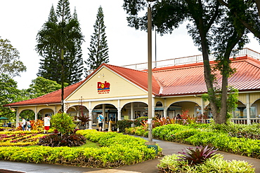 Dole Pineapple Plantation, Oahu, Hawaii, United States of America