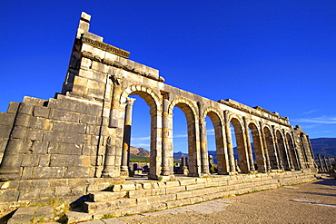 Excavated Roman City, Volubilis, Morocco, North Africa