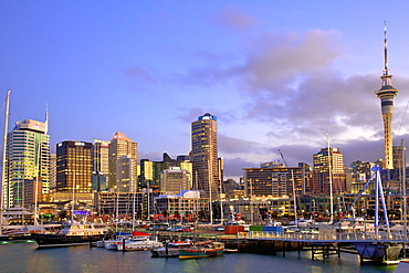 Auckland City and Harbour, Auckland, North Island, New Zealand, Pacific