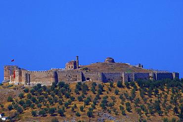 Byzantine Citadel, Selcuk, Anatolia, Turkey, Asia Minor, Eurasia