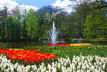 Park pond and bed of flowers with Tulips and Hyacinths, Keukenhof Garden, Lisse, Netherlands