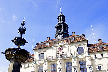 Town hall and Luna fountain, Luneburg, Lower Saxony, Germany