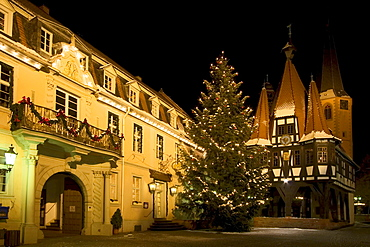 Townhall and Christmas tree at night, Michelstadt, Hessen, Germany