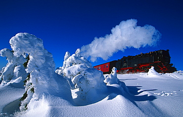 Steam locomotive, mountain Brocken, national park Hochharz, Harz, Saxony-Anhalt, Germany