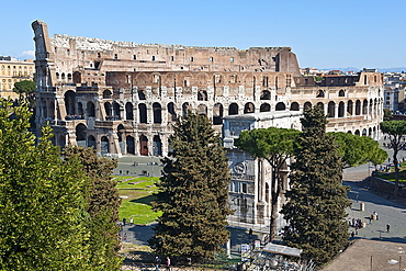 View from Palatin Hill at Colosseum and Arch of Constantine, Rome, Lazio, Italy / Amphitheatrum Novum, Amphitheatrum Flavium, amphitheatre, arch of triumph