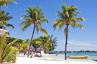beach scene with palmtree and boat, Pereybere, Mauritius, Africa, Indian Ocean / Pereybere