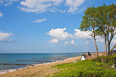 Baltic beach, thatched-roof house, Ahrenshoop, Mecklenburg-West Pomerania, Germany