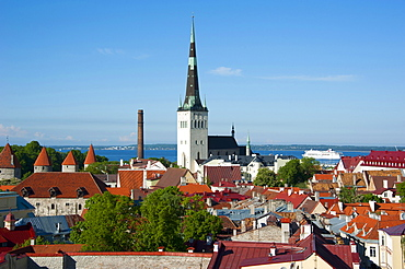 Old town, Tallinn, Estonia, Baltic states, Europe / view from Toopea hill
