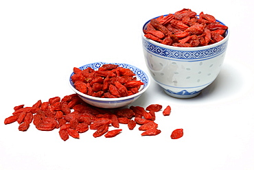 Goji berries / (Lycium barbarum)