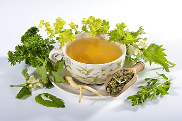 Menopause tea, alchemilla, lady's mantle, parsley root, white dead nettle, archangel, balm / (Alchemilla vulgaris, petroselinum crispum, lamium album, melissa officinalis)