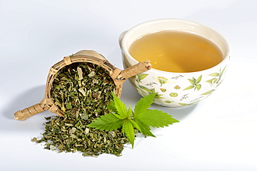 Common hemp, tea
