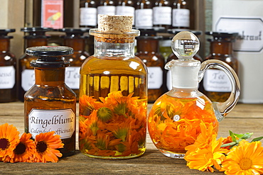 Marigold flowers oil / (Calendula officinalis)