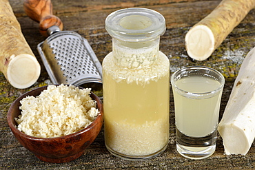 production Horseradish wine / (Cochlearia armoracia)