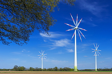 wind power plant, Carum, Lower Saxony, Germany