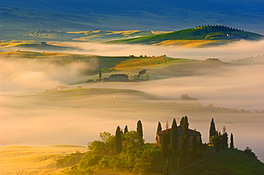 Val d'Orcia, Orcia Valley, Morning fog, The Belvedere at dawn, UNESCO World Heritage Site, San Quirico d'Orcia, Siena Province, Tuscany, Tuscany landscape, Italy, Europe - 1127-19895