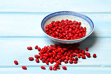 dried Barberries / (Berberis vulgaris)