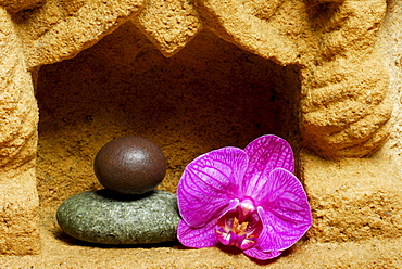 Stacked stones and Orchid blossom