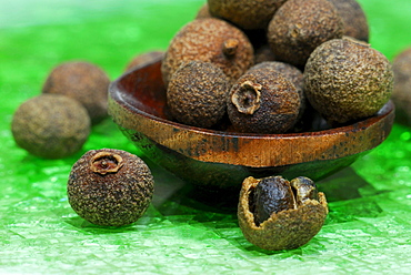Allspice / (Pimenta dioica officinalis) / Jamaica Pepper, Myrtle Pepper, Newspice
