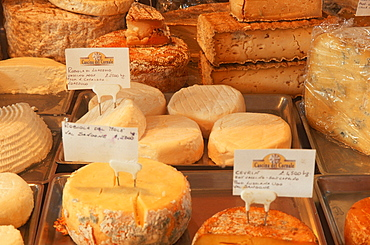 Different kinds of cheese, Piemont, Italy
