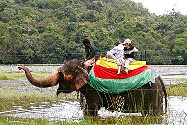 Elephant ride, Sigiriya, Sri Lanka, Asia