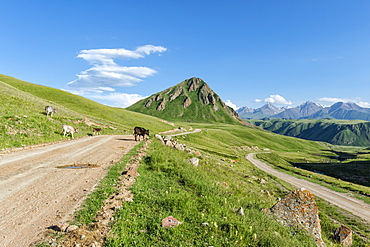 Gravel Road across Naryn Gorge, Naryn Region, Kyrgyzstan, Central Asia, Asia
