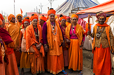 Sadhvi in orange red saree during Allahabad Kumbh Mela, World's largest religious gathering, Allahabad, Uttar Pradesh, India, Asia