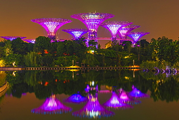 Gardens by the Bay reflecting in the water at night, Singapore, Southeast Asia, Asia